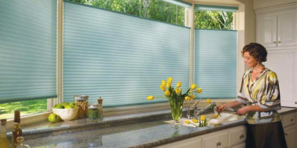 Applause honeycomb shades with top-down, bottom-up option