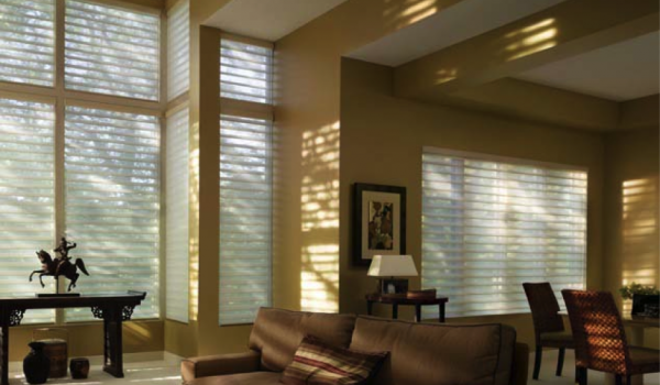 Silhouette window treatment